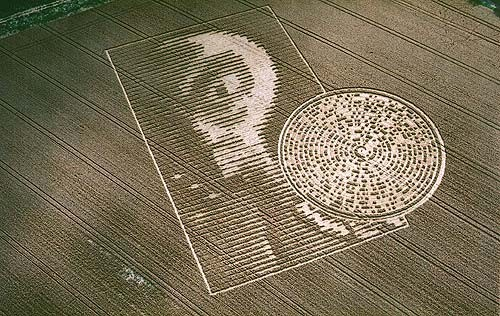 Alien Face Crop Circle http://arealiensreal.org/crop-circles/